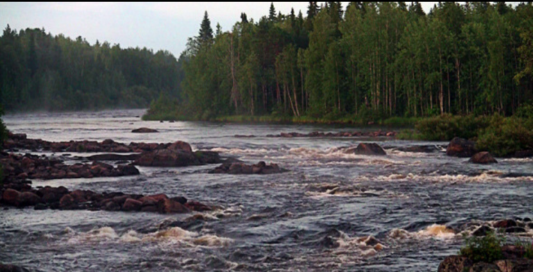 A week for TestingSaaS: a wild kayak ride!
